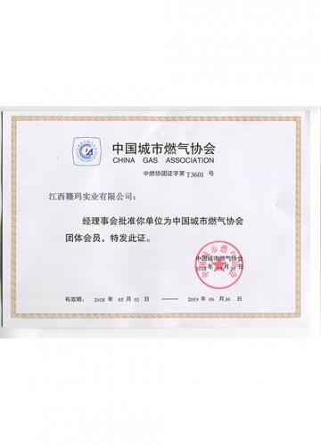 中国燃气协会会员